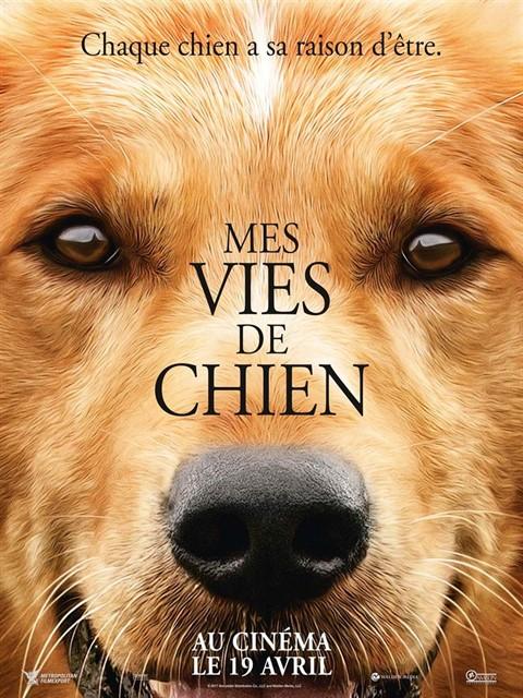 Mes vies de chien à la location en dvd
